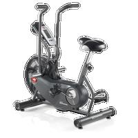 Schwinn Airdyne AD6 Exercise Bike--thumbnail