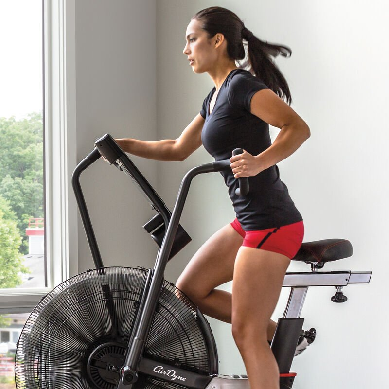 Schwinn Airdyne AD7 in-home exercise bike - expanded view