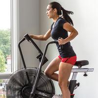 Schwinn Airdyne AD7 in-home exercise bike--thumbnail