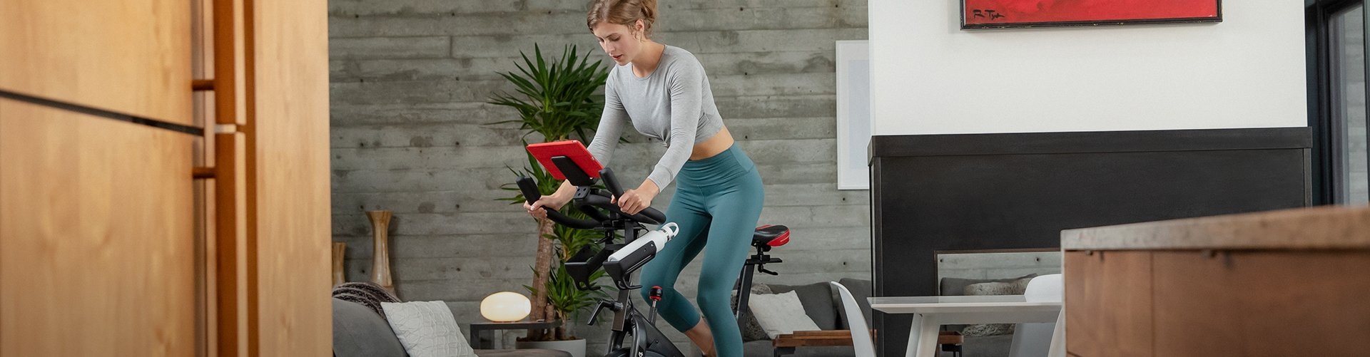 Schwinn Upright Bikes
